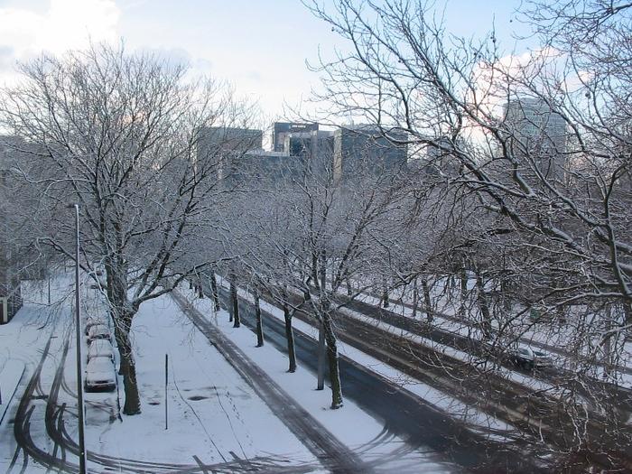 winter2006.jpg